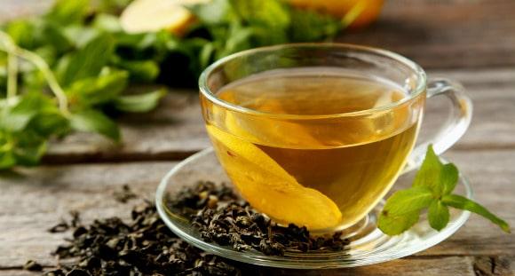 Comment fonctionne le thé vert ?