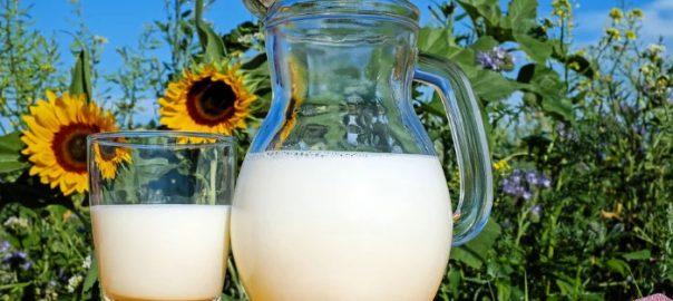 mettre du lait dans le the
